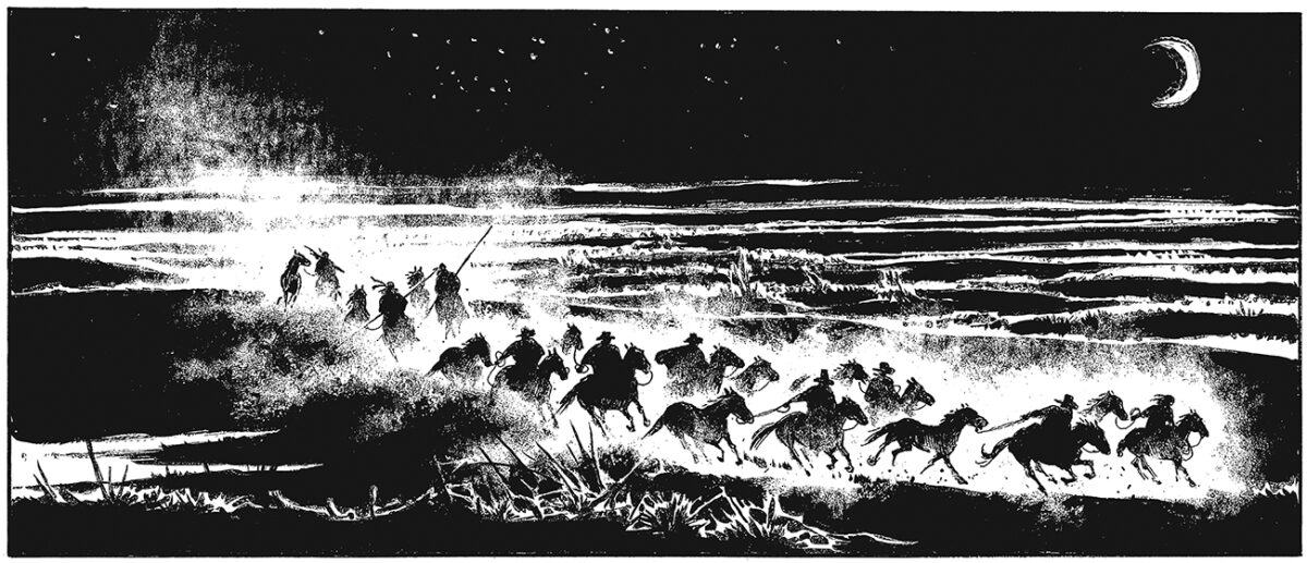 """neki-stilski-postupci-ništa-lepše-od-noćnih-prizora-u-pokretu-oni-su-srž-""""patagonijine""""-poetike"""